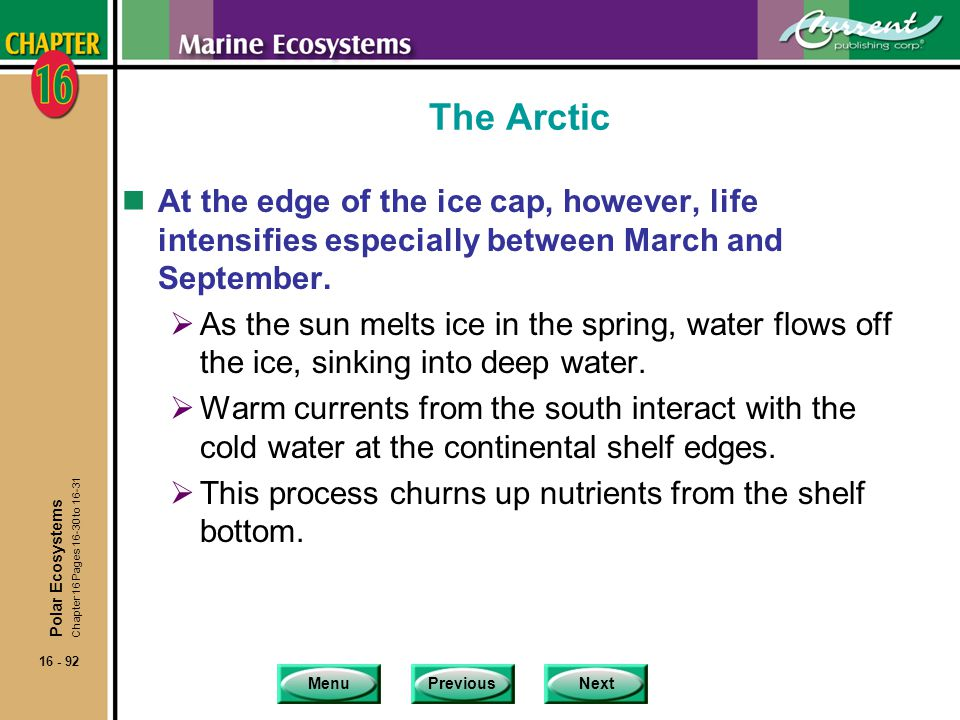 The Arctic At the edge of the ice cap, however, life intensifies especially between March and September.