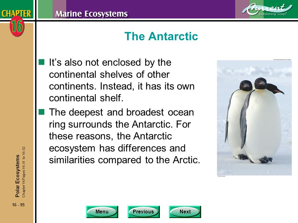 The Antarctic It's also not enclosed by the continental shelves of other continents. Instead, it has its own continental shelf.