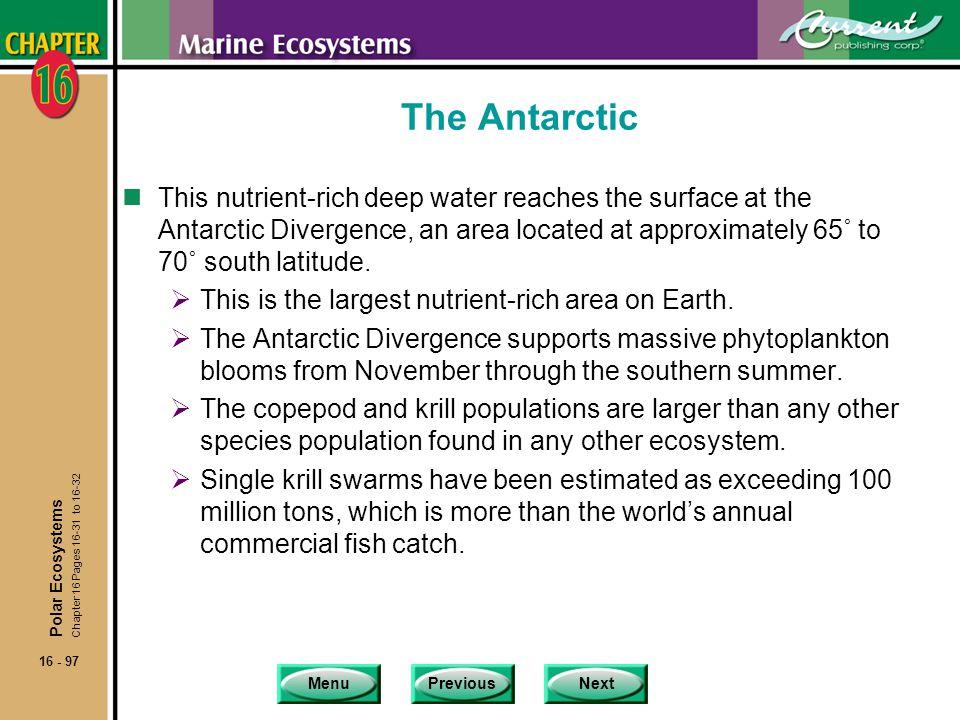 The Antarctic