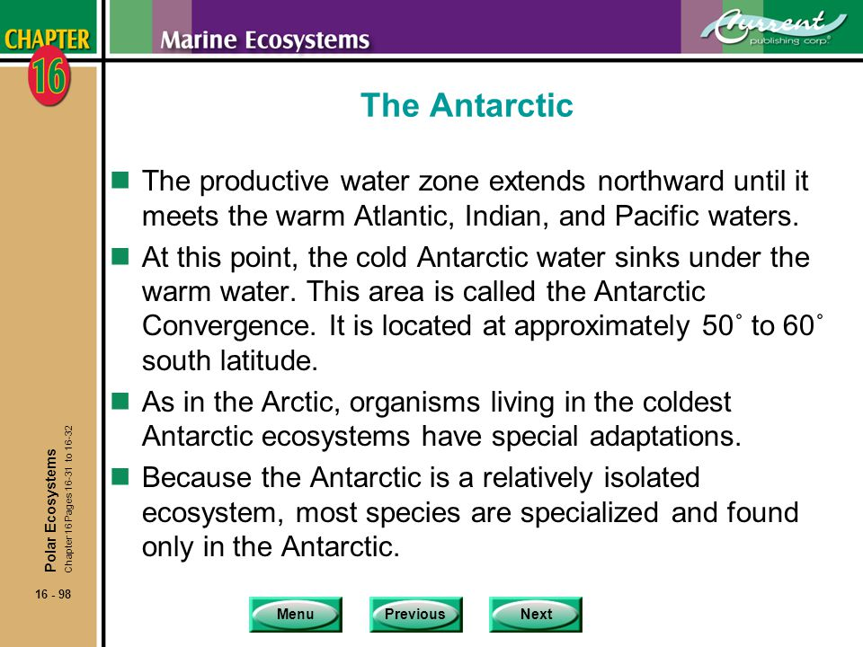 The Antarctic The productive water zone extends northward until it meets the warm Atlantic, Indian, and Pacific waters.