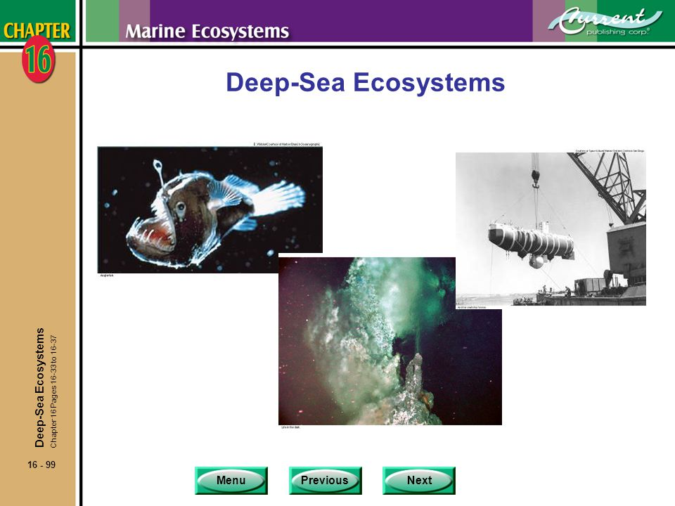 Deep-Sea Ecosystems Deep-Sea Ecosystems