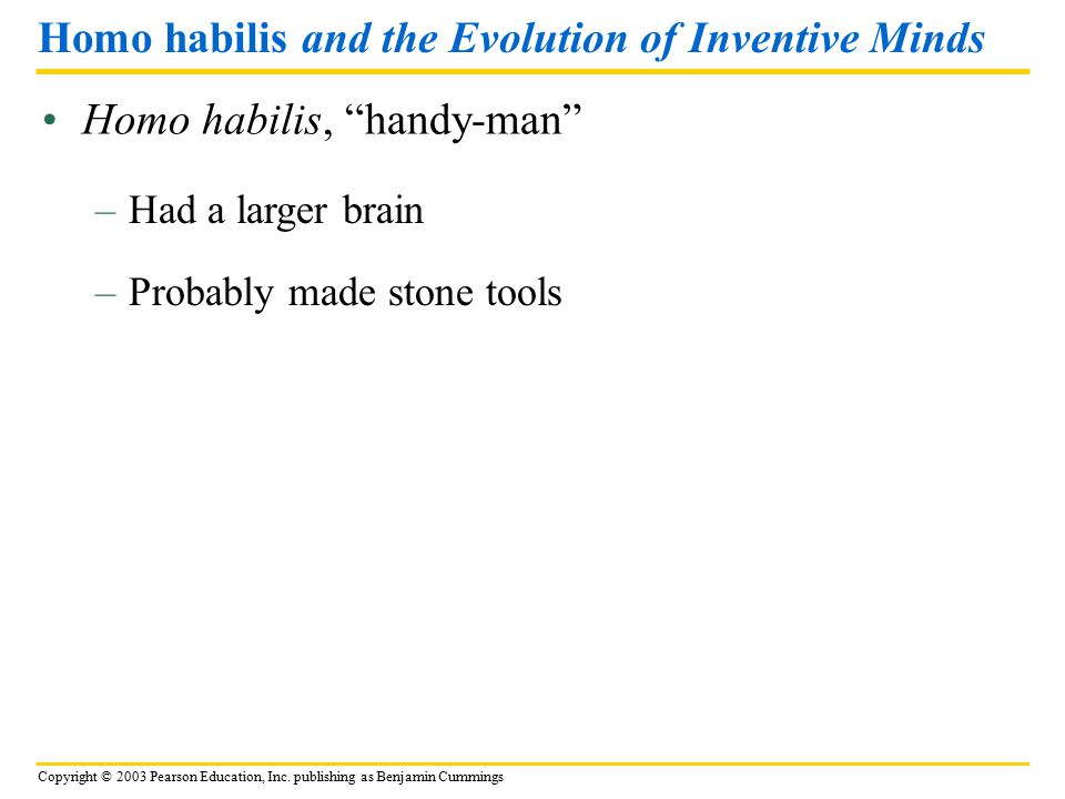 Homo habilis and the Evolution of Inventive Minds