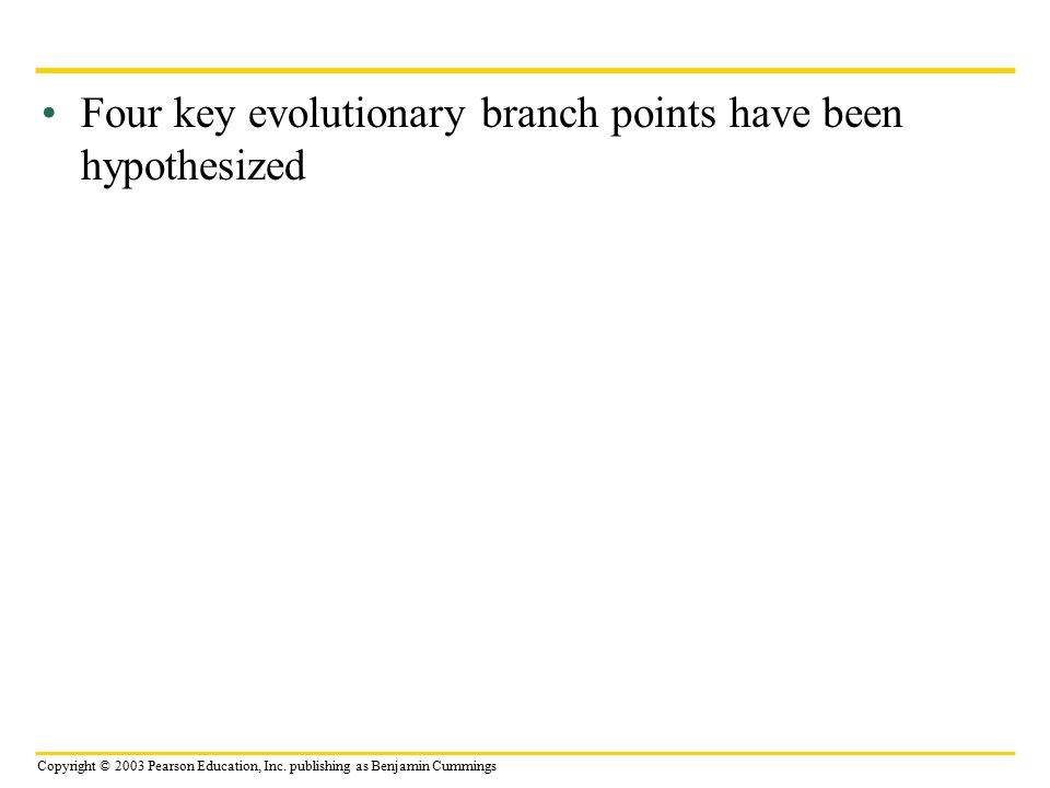 Four key evolutionary branch points have been hypothesized