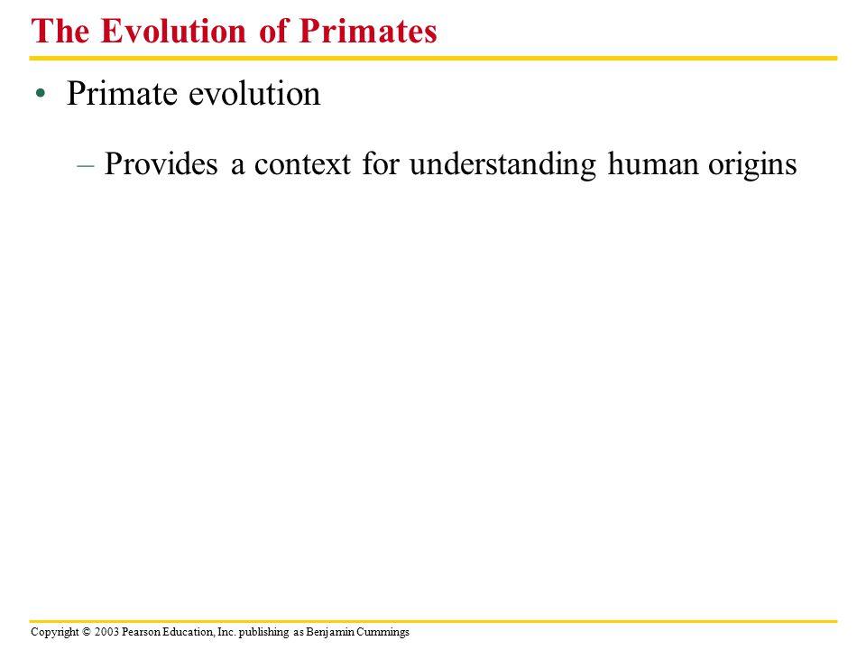 The Evolution of Primates