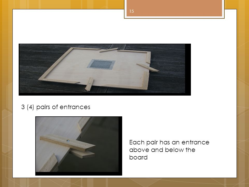 Snelgrove Board 3 (4) pairs of entrances