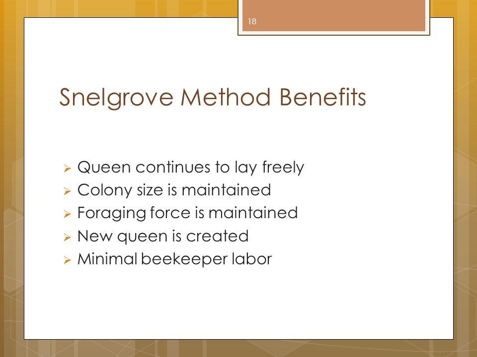 Snelgrove Method Benefits