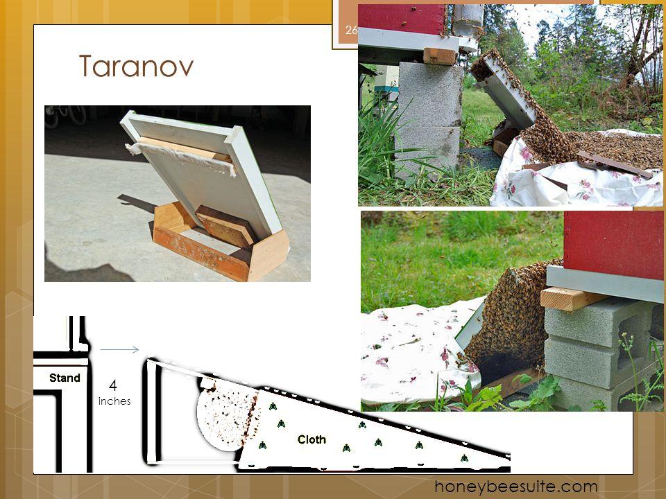 Taranov 4 inches honeybeesuite.com