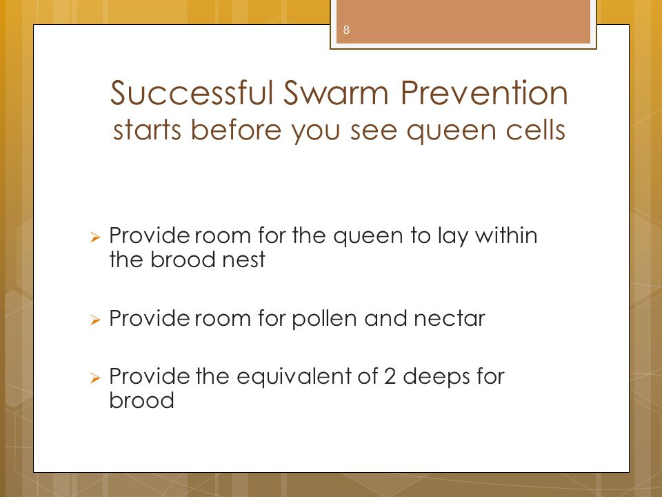 Successful Swarm Prevention starts before you see queen cells