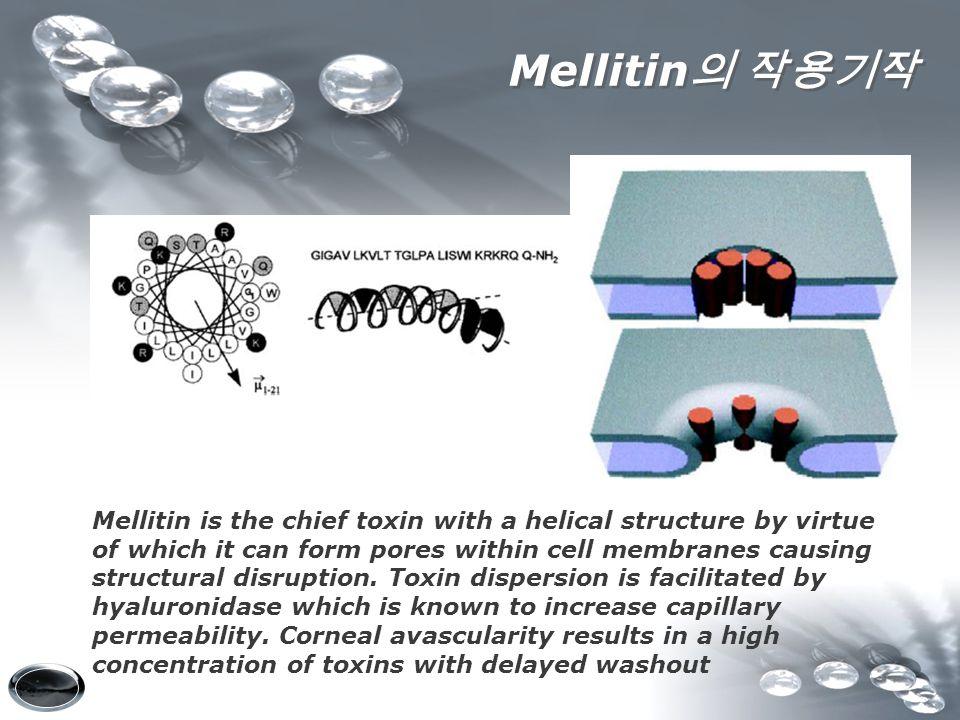 Mellitin의 작용기작