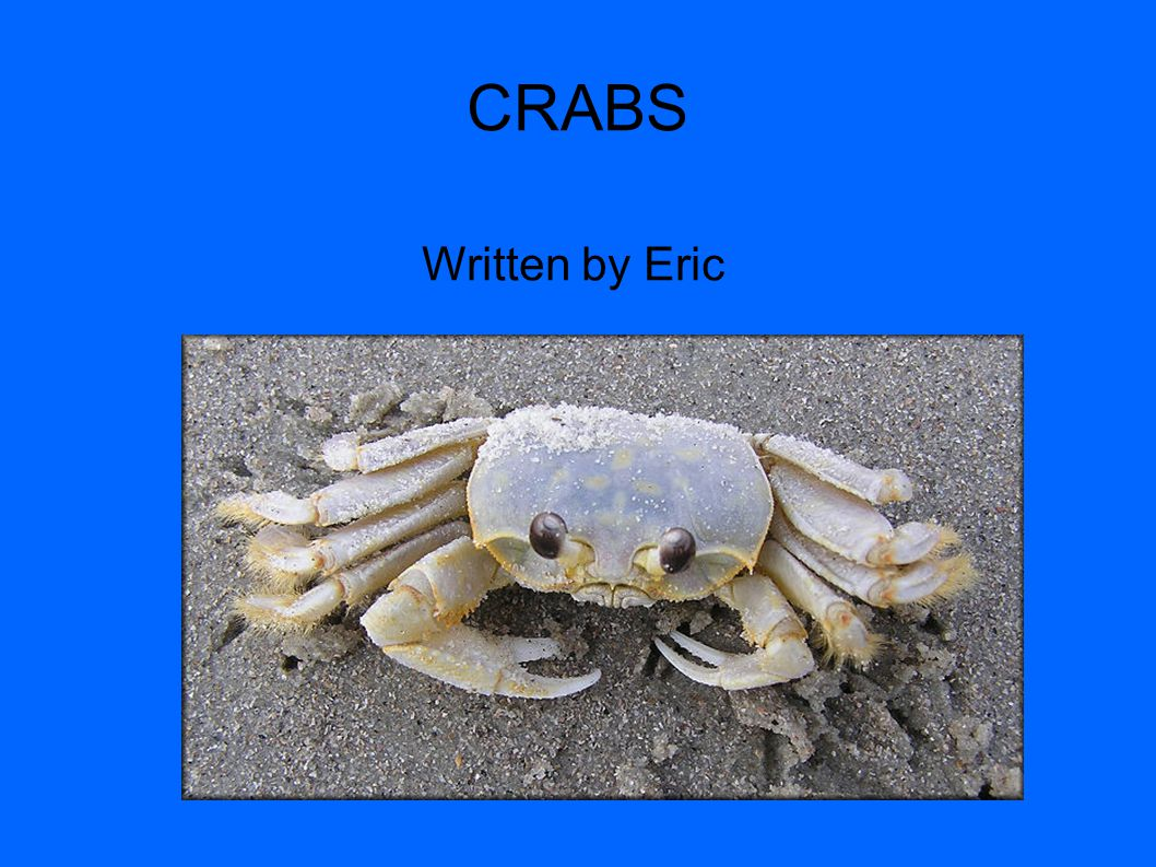 CRABS Written by Eric 1