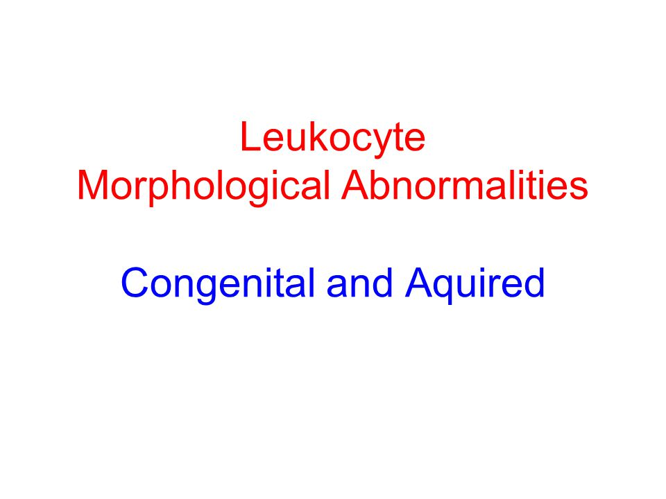 Leukocyte Morphological Abnormalities Congenital and Aquired