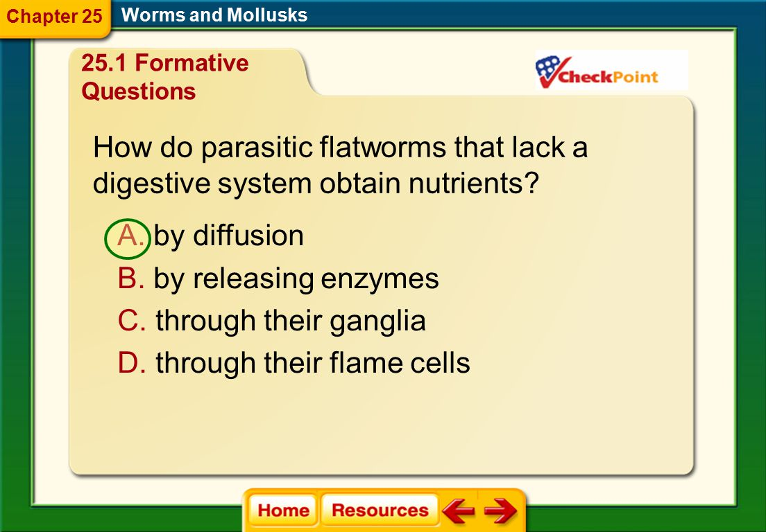 How do parasitic flatworms that lack a