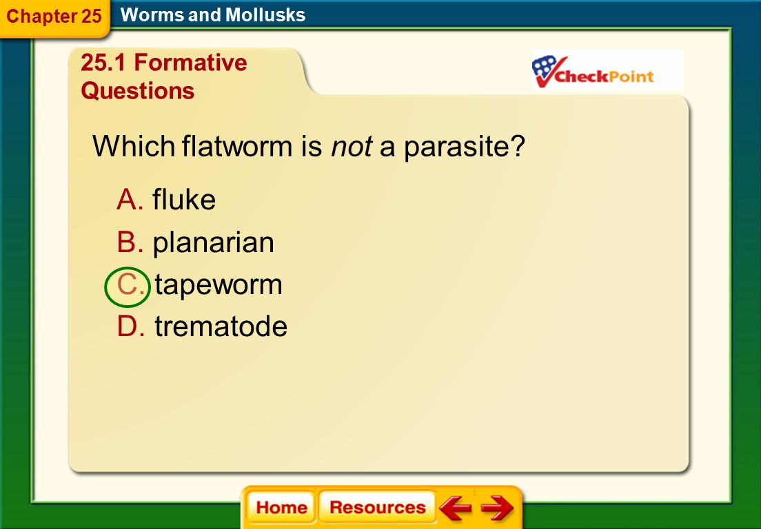 Which flatworm is not a parasite