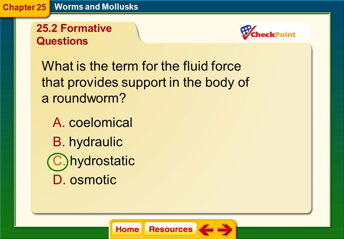What is the term for the fluid force