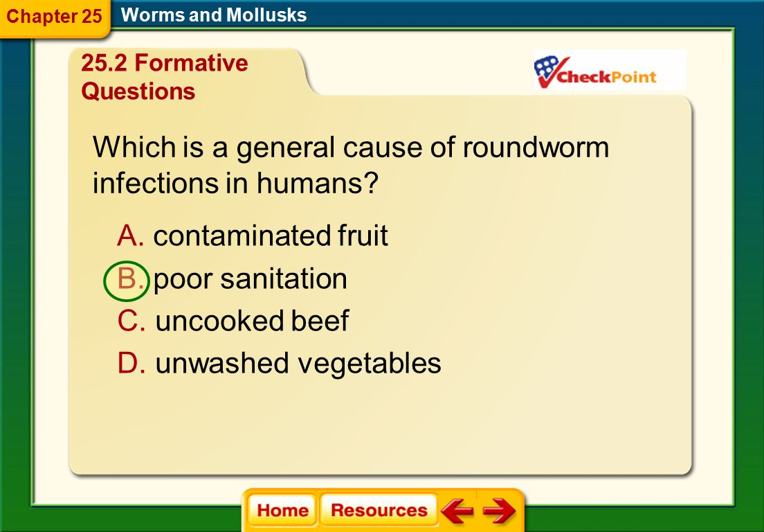 Which is a general cause of roundworm infections in humans