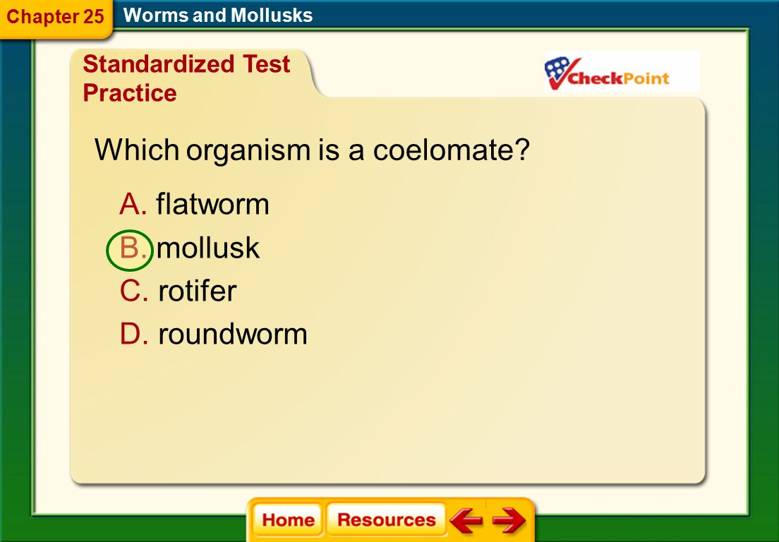 Which organism is a coelomate