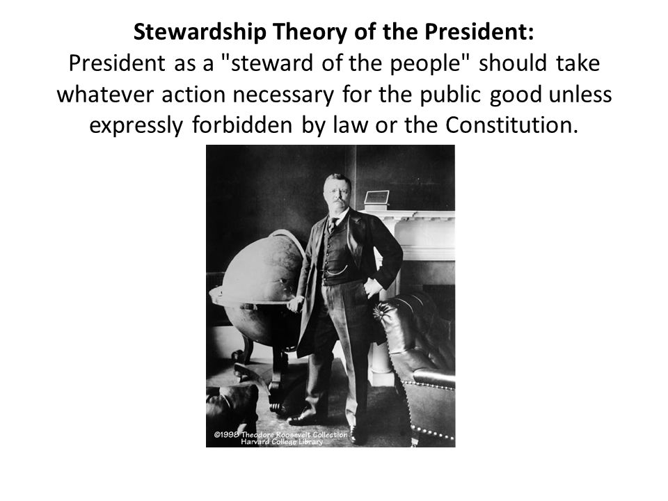 Stewardship Theory of the President: President as a steward of the people should take whatever action necessary for the public good unless expressly forbidden by law or the Constitution.