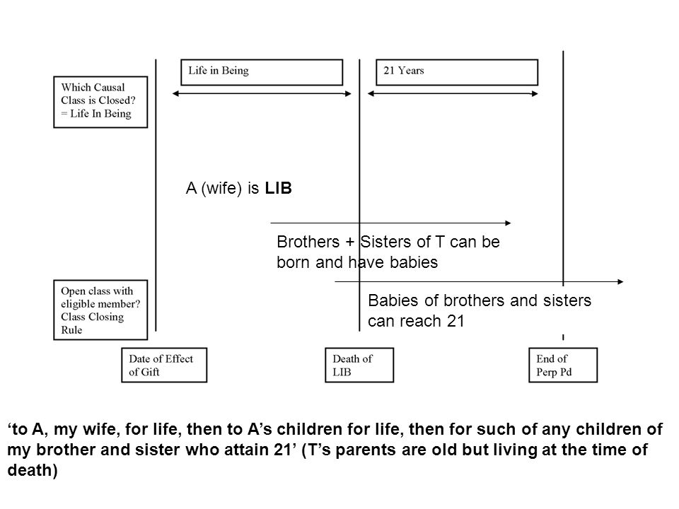 A (wife) is LIB Brothers + Sisters of T can be born and have babies. Babies of brothers and sisters can reach 21.