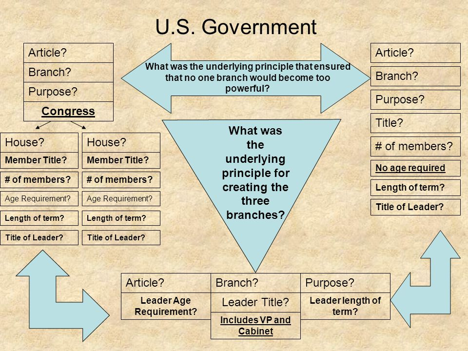 U.S. Government Article Article Branch Branch Purpose Purpose