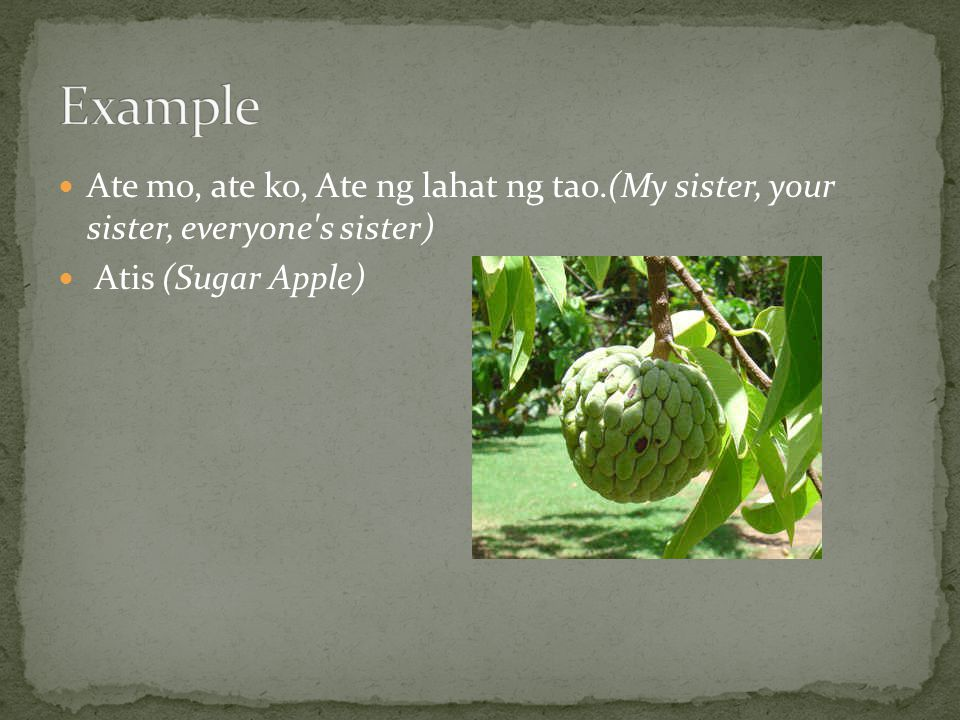 Example Ate mo, ate ko, Ate ng lahat ng tao.(My sister, your sister, everyone s sister) Atis (Sugar Apple)