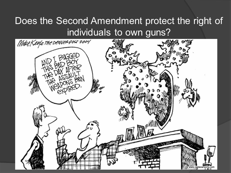 Does the Second Amendment protect the right of individuals to own guns