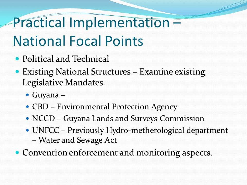 Practical Implementation – National Focal Points