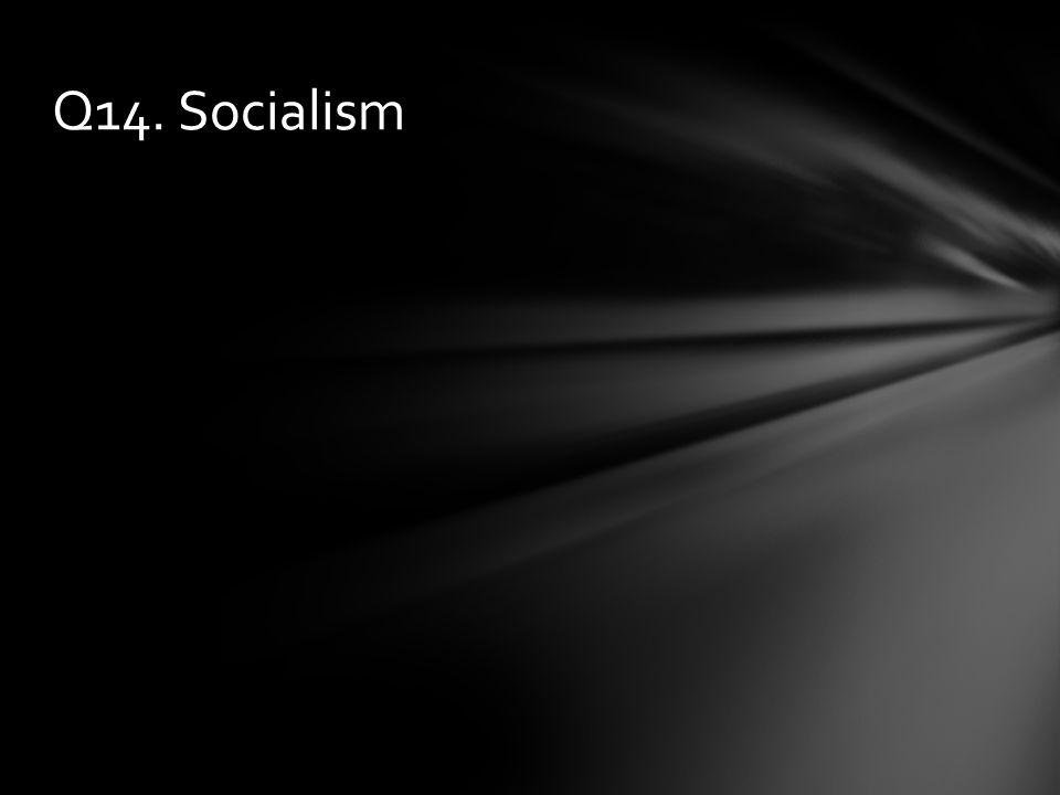 Q14. Socialism