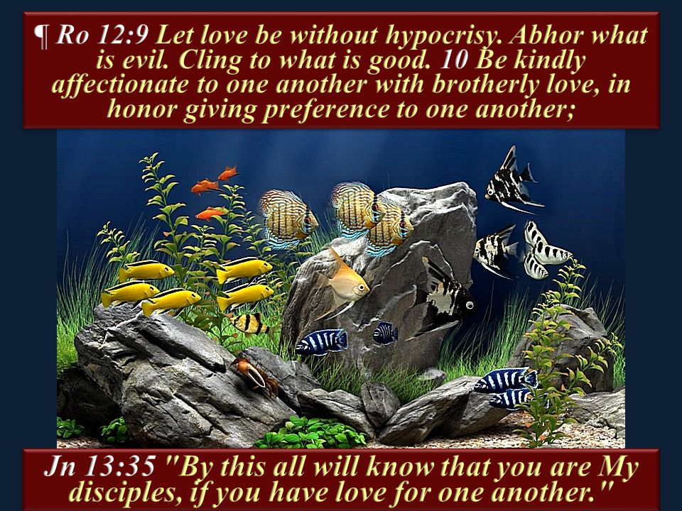 ¶ Ro 12:9 Let love be without hypocrisy. Abhor what is evil
