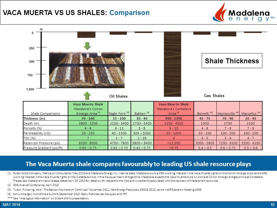 VACA MUERTA VS US SHALES: Comparison