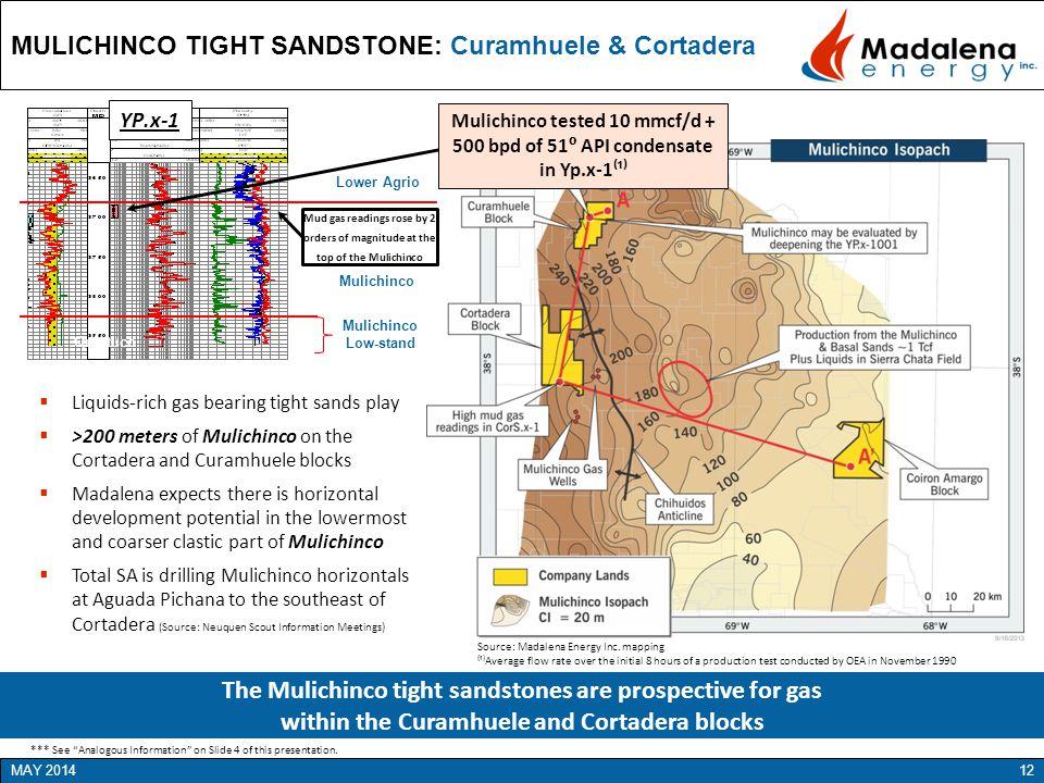 MULICHINCO TIGHT SANDSTONE: Curamhuele & Cortadera