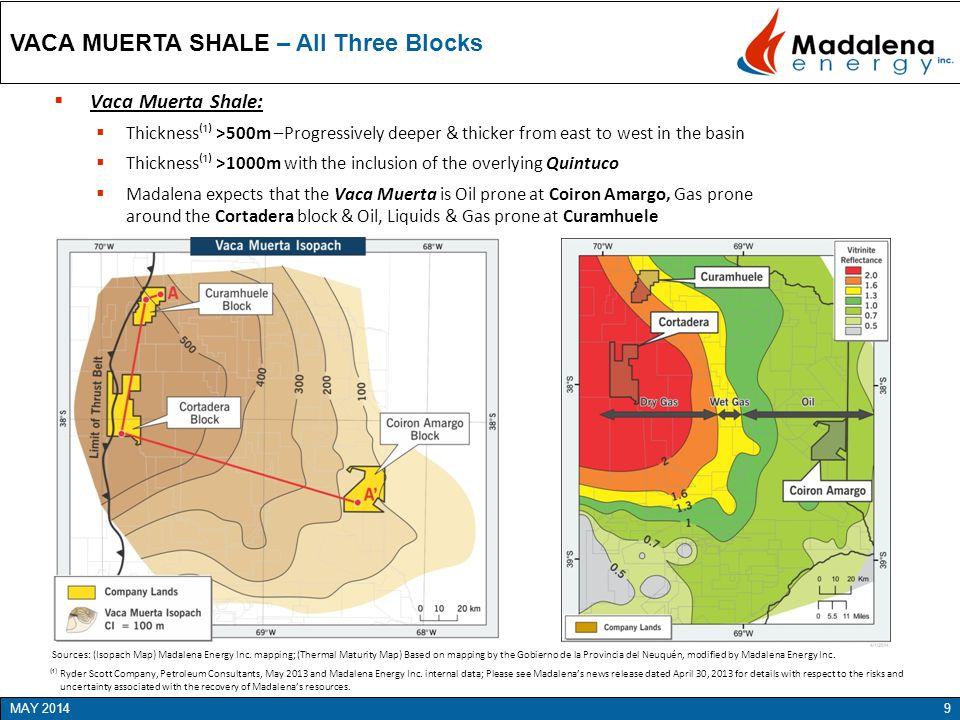 VACA MUERTA SHALE – All Three Blocks