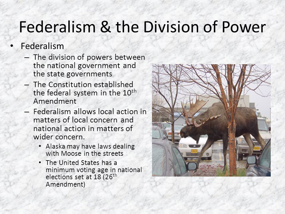 Federalism & the Division of Power