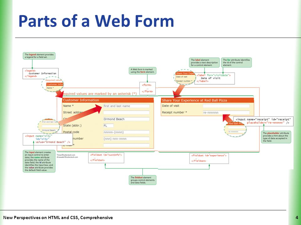 Parts of a Web Form New Perspectives on HTML and CSS, Comprehensive