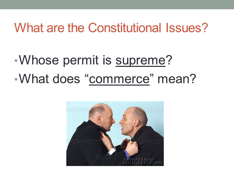 What are the Constitutional Issues