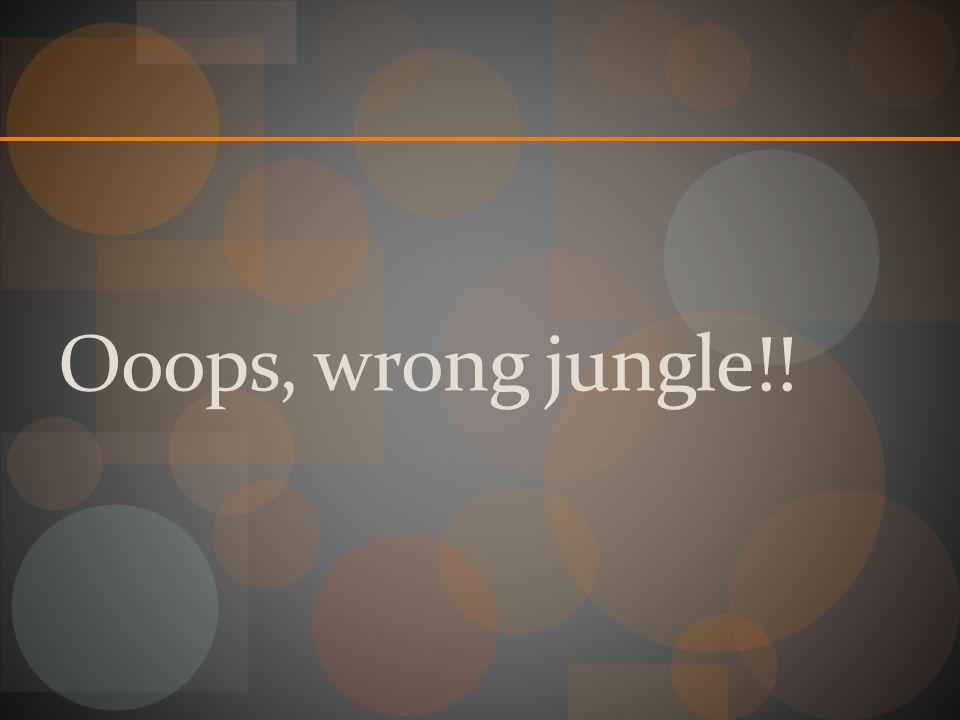 Ooops, wrong jungle!!