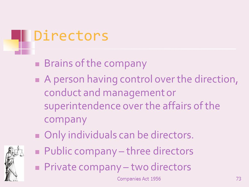 Directors Brains of the company
