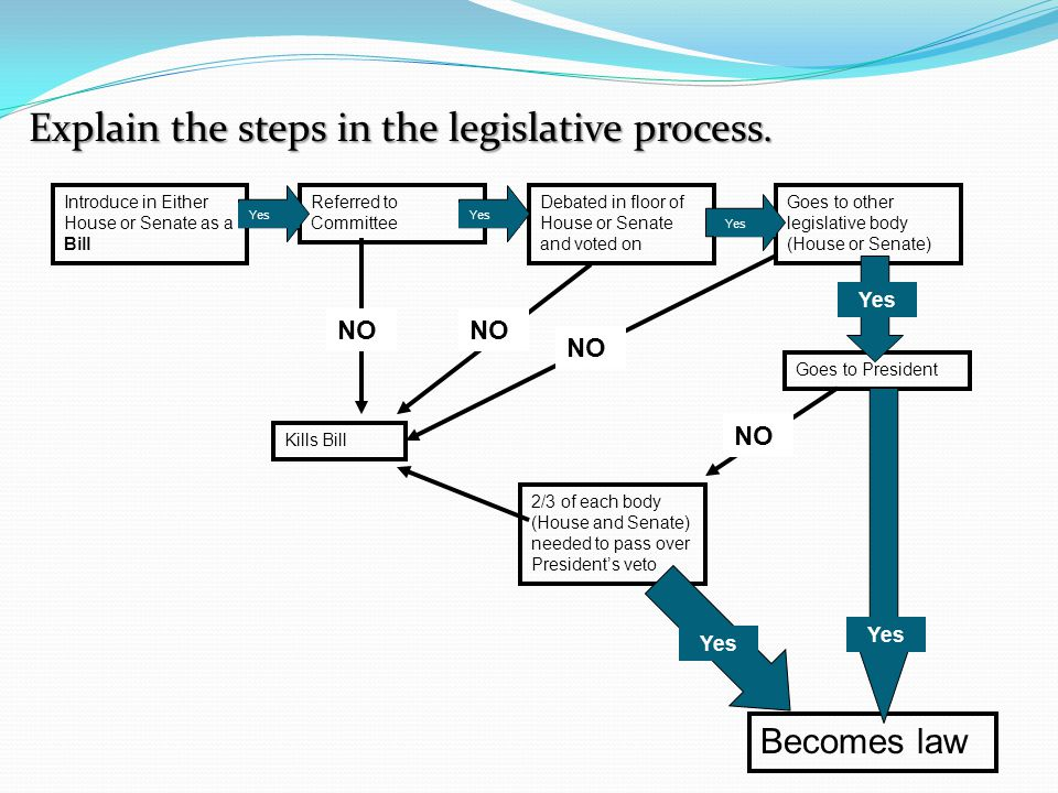 Explain the steps in the legislative process.