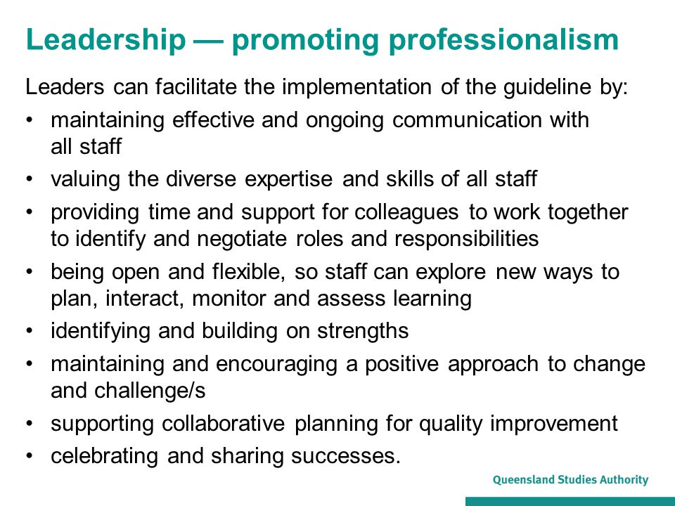 Leadership — promoting professionalism