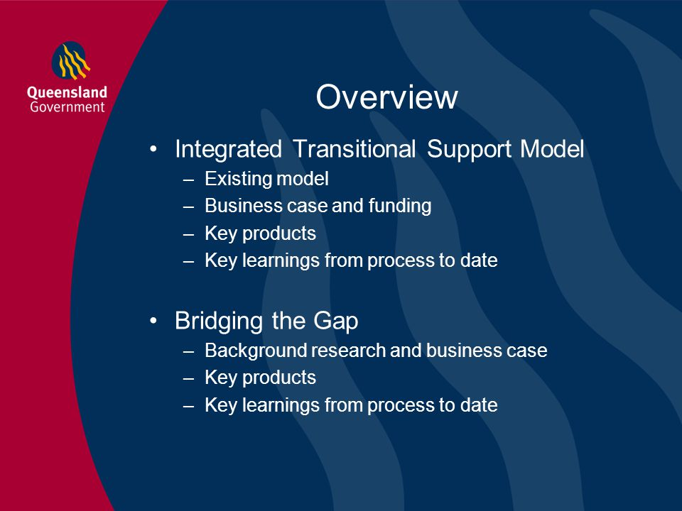 Overview Integrated Transitional Support Model Bridging the Gap