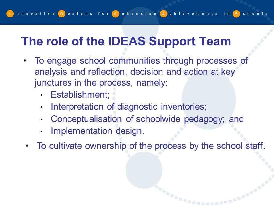 The role of the IDEAS Support Team