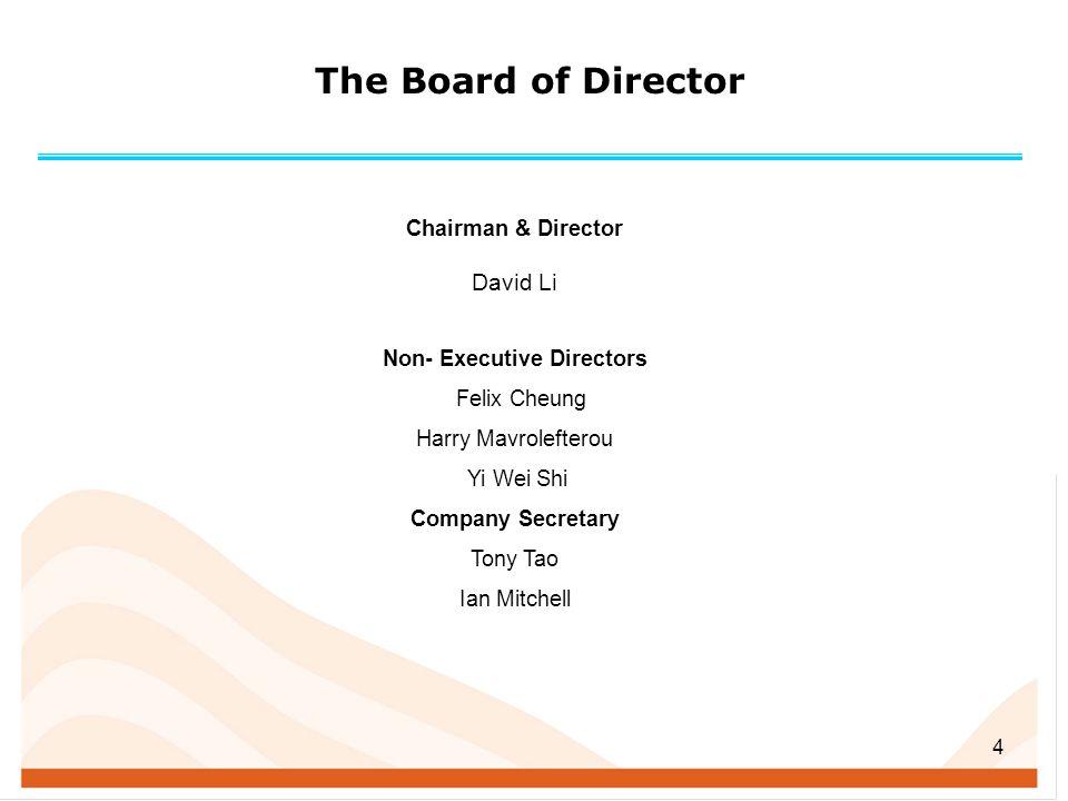 Non- Executive Directors