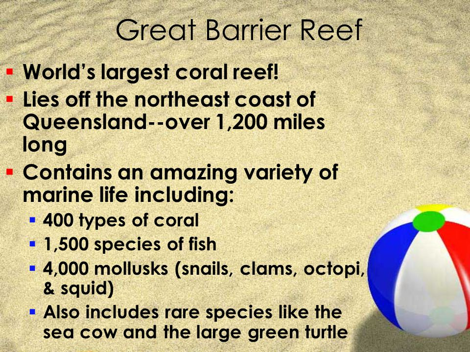 Great Barrier Reef World's largest coral reef!