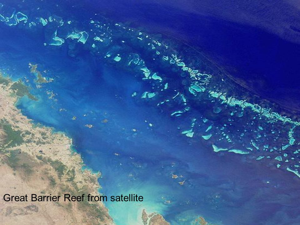 Great Barrier Reef from satellite