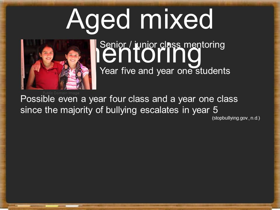 Aged mixed mentoring Senior / junior class mentoring