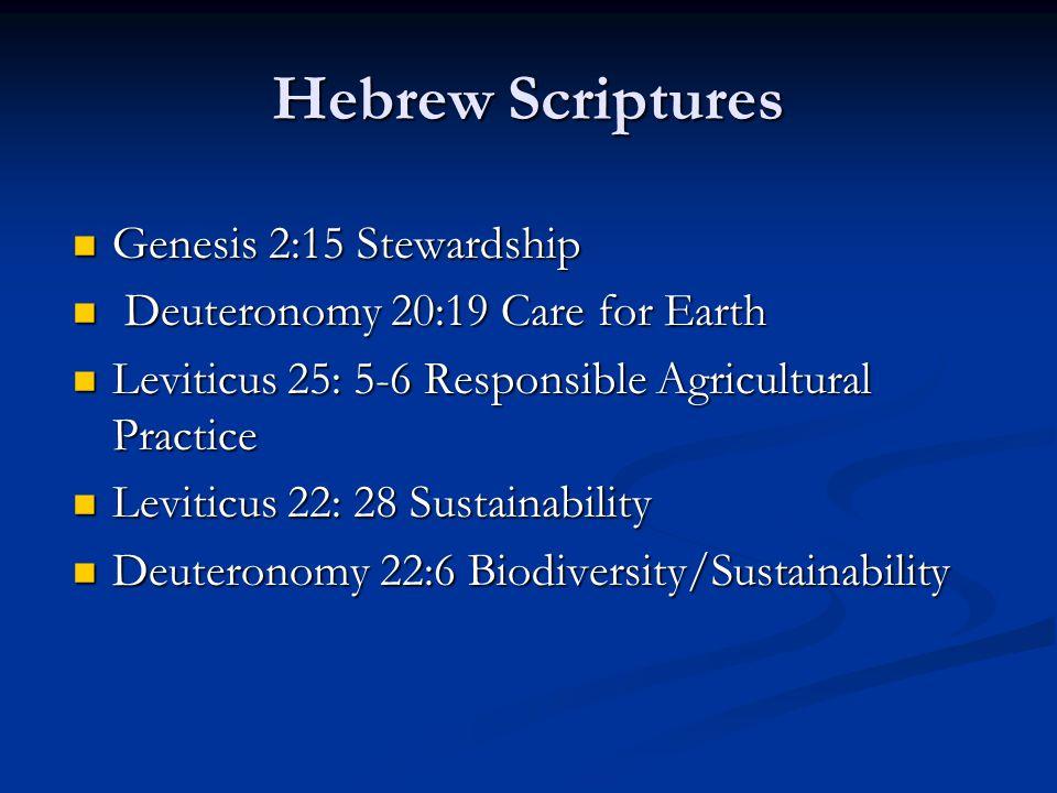 Hebrew Scriptures Genesis 2:15 Stewardship