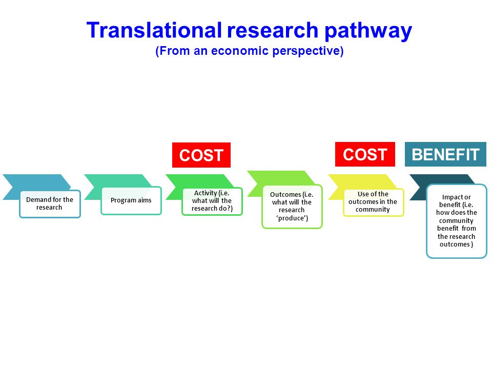 Translational research pathway (From an economic perspective)
