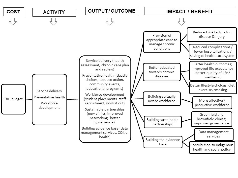 IMPACT / BENEFIT OUTPUT / OUTCOME COST ACTIVITY IUIH budget
