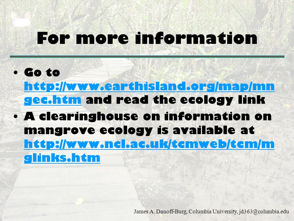 For more information Go to http://www.earthisland.org/map/mngec.htm and read the ecology link.