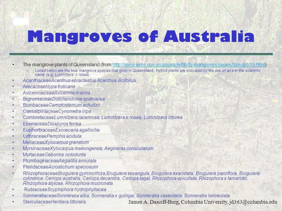 Mangroves of Australia