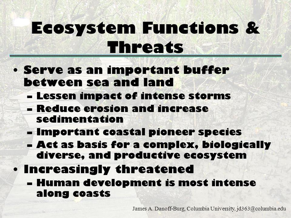 Ecosystem Functions & Threats